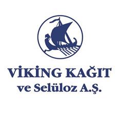 viking-basolsan